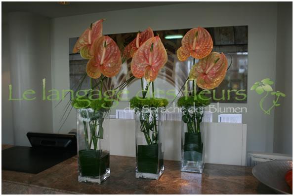 b ro dekoration b rodekoration dekoration b ro m nchen. Black Bedroom Furniture Sets. Home Design Ideas